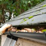 Commercial Gutter Leaves Removal London
