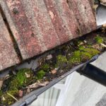 Commercial Gutter Moss Clean Out London