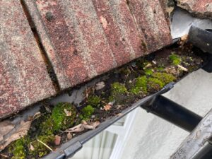 Gutter Repairs near me in Egham TW20